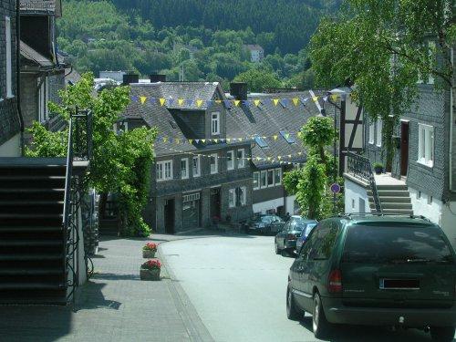 berleburg_view